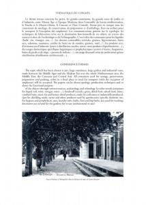 montpellier-p6